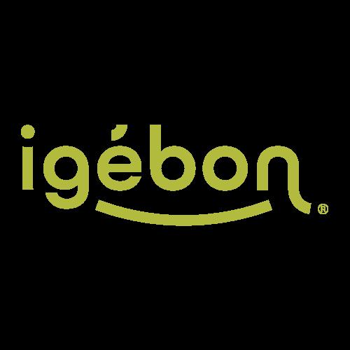 logo igebon - e-commerce