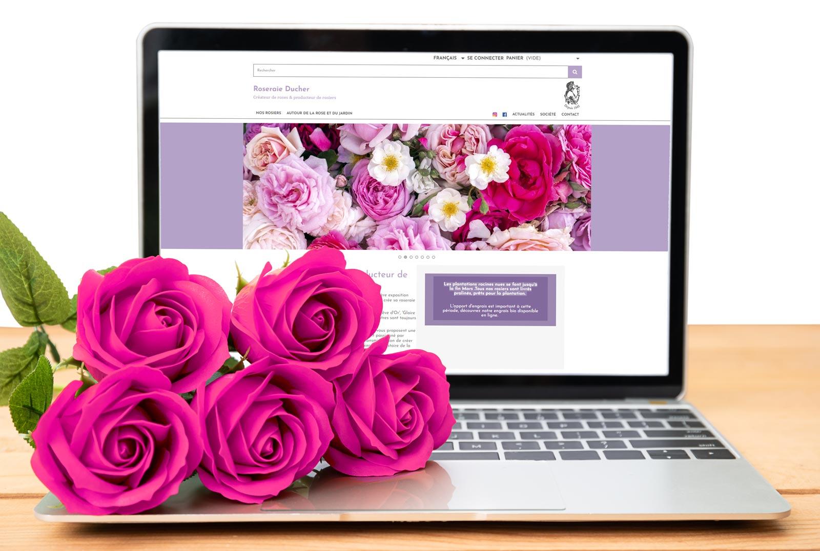 amelioration site web roseraie
