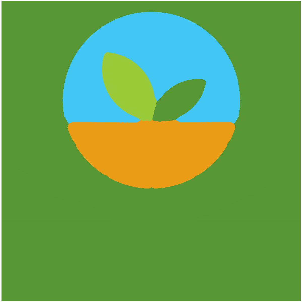 logo-site-e-commerce